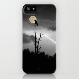 "POTUS Trump has something to crow about: ""There is no collusion"". iPhone Case"
