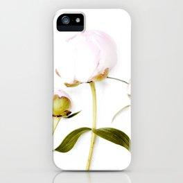 Peony Bulbs iPhone Case
