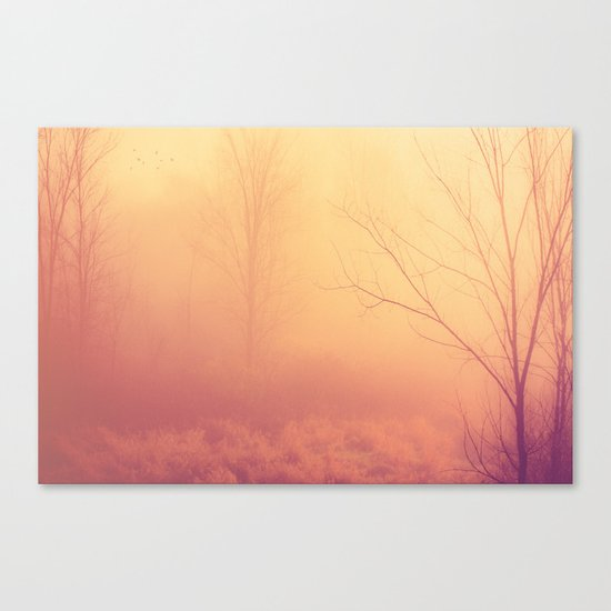 What If We Could Canvas Print