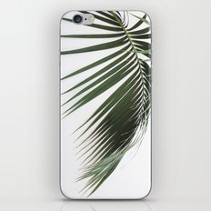 Fronds iPhone Skin