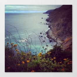 Wild Big Sur Canvas Print