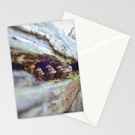 Mushroom Observers Stationery Cards