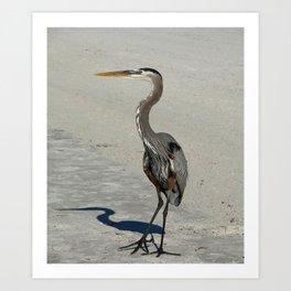 Living On A Beach Art Print
