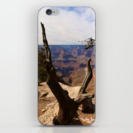 Grand Canyon View Through Dead Tree iPhone Skin