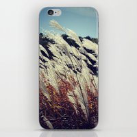 transparent iPhone & iPod Skins featuring Transparent by KunstFabrik_StaticMovement Manu Jobst
