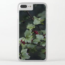 Mountain currant Clear iPhone Case