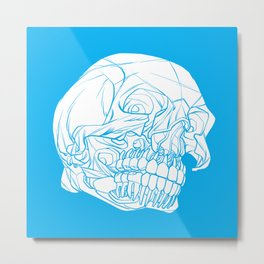 Skull Deconstructed Metal Print