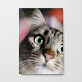 Tiger Lili 2 Metal Print