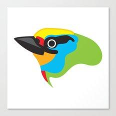 Black-browed Barbet Canvas Print
