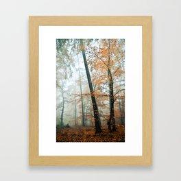 forest colors Framed Art Print