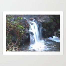 Strawberry Canyon Waterfall Art Print