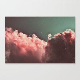 Pink Cotton Canvas Print