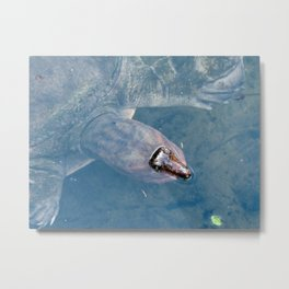 ...can I help you with something? Metal Print
