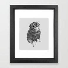 Sweet Black Pug Framed Art Print