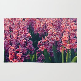 Hyacinth field #2 Rug