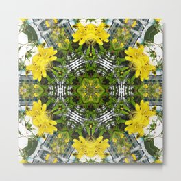 Kaleidoscope of showy St Johns Wort Metal Print