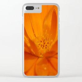 Sunrise Dew Clear iPhone Case
