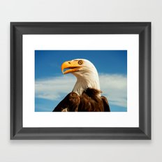 EAGLE EYED Framed Art Print