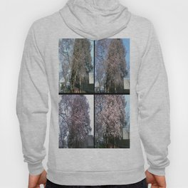 Tree Blossoms Hoody