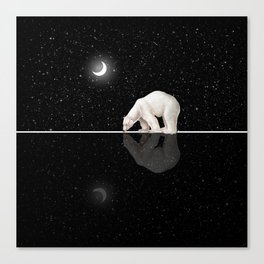 Starry Night Reflection Canvas Print