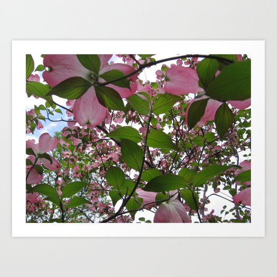 Pink Dreams Art Print