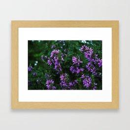 bee on flowers Framed Art Print