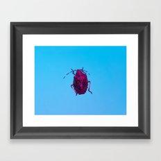 Bugged #16 Framed Art Print