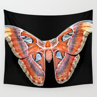 atlas Wall Tapestries featuring Attacus atlas by Marcel Derweduwen