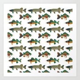 Freshwater Favorites Art Print