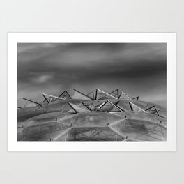 Eden Project Roof 2 Black and White Art Print