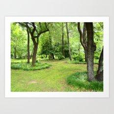 Kenilworth Marsh Art Print