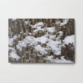 Frosted Bark Metal Print