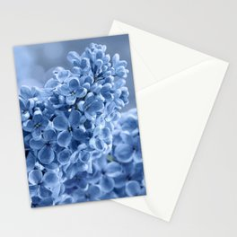 Lilac blue 281 Stationery Cards