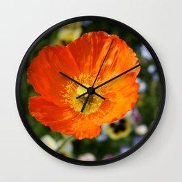 Orange Glowing Poppy by Mandy Ramsey, Haines, Alaska Wall Clock