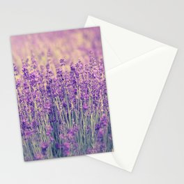 Purple Lavender Fields Stationery Cards