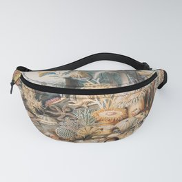 Ocean Life by James M. Sommerville Fanny Pack