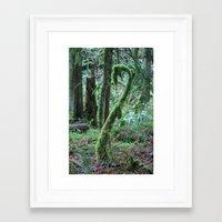 dr seuss Framed Art Prints featuring Dr. Seuss Tree by shamik