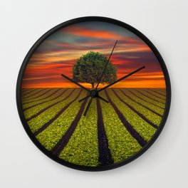 Lonely Tree In Field At Sunset Ultra HD Wall Clock