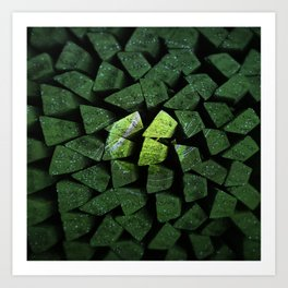 The Power Of The Tennisball Art Print