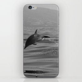 Black and white dolphin race in the ocean iPhone Skin