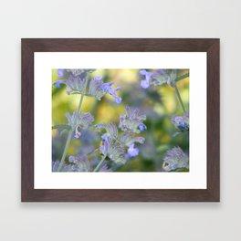 Shy Bee Framed Art Print