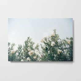 Neutral Spring Tones Metal Print