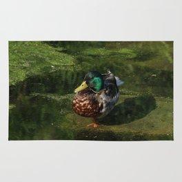 Duck's portrait Rug