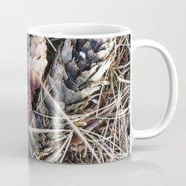 Spruce Cone 1 Coffee Mug