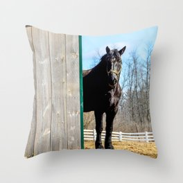Percheron Horse by Teresa Thompson Throw Pillow