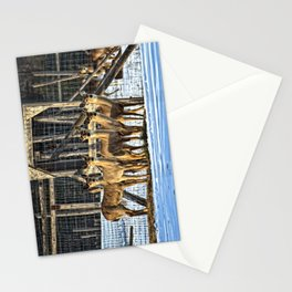 Whitetail Deer Stare Down Stationery Cards
