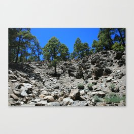 View of a rocky hillside in the Canary Islands Canvas Print