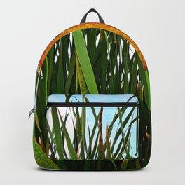 Bullrush  Backpack