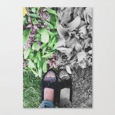 Feet / Grass Canvas Print