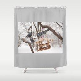 Three hungry pigeons on bird feeder Shower Curtain